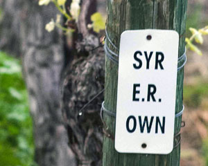 Thompson Vineyard Syrah Endpost
