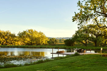 Dovecote Mission Pond
